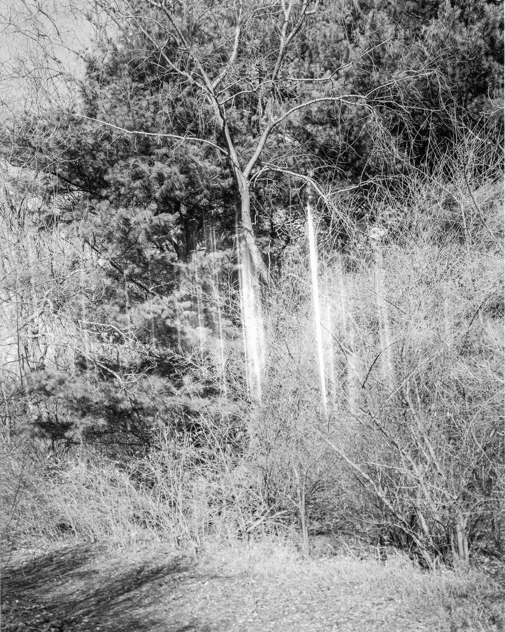 4x5-3.jpg