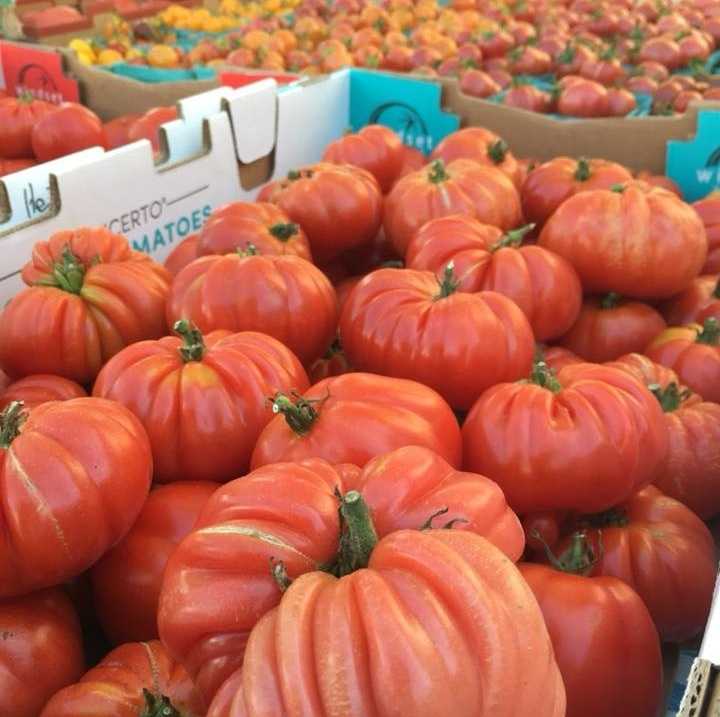 An abundance of tomatoes from Nuts About Berries Farms. (Orenco Station Sunday Market)