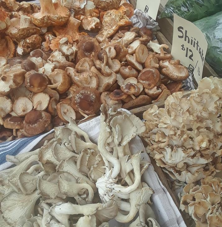 Mushroom varieties from Sparrowhawk Farm.(Downtown Hillsboro Saturday Market)