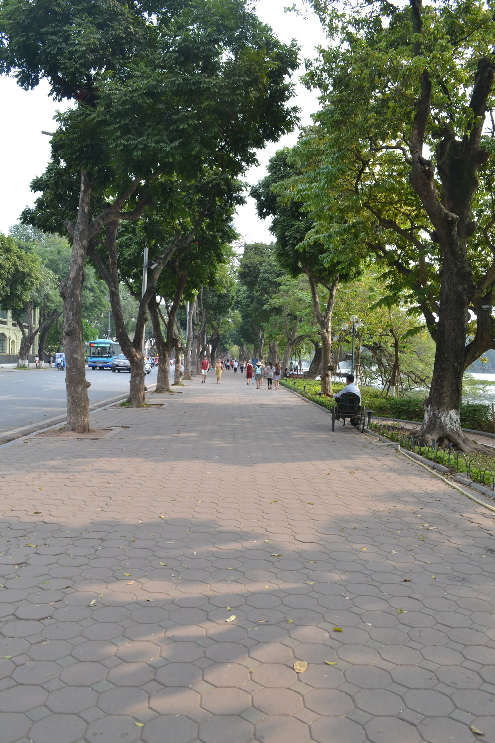 Wide Sidewalks with Trees Providing Shade