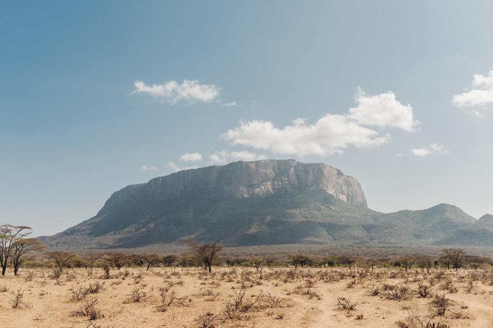 CueMotion Africa 01.jpg