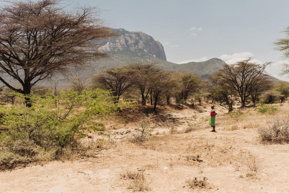 CueMotion Africa 02.jpg