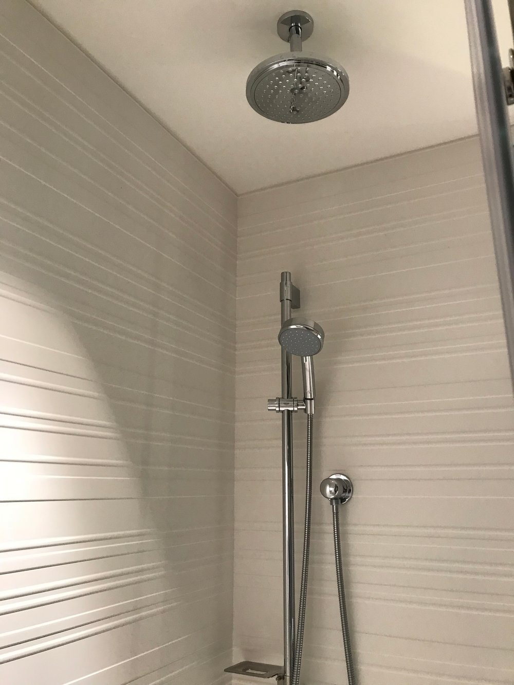 Ceiling-mounted rain shower and adjustable wall-mounted shower head