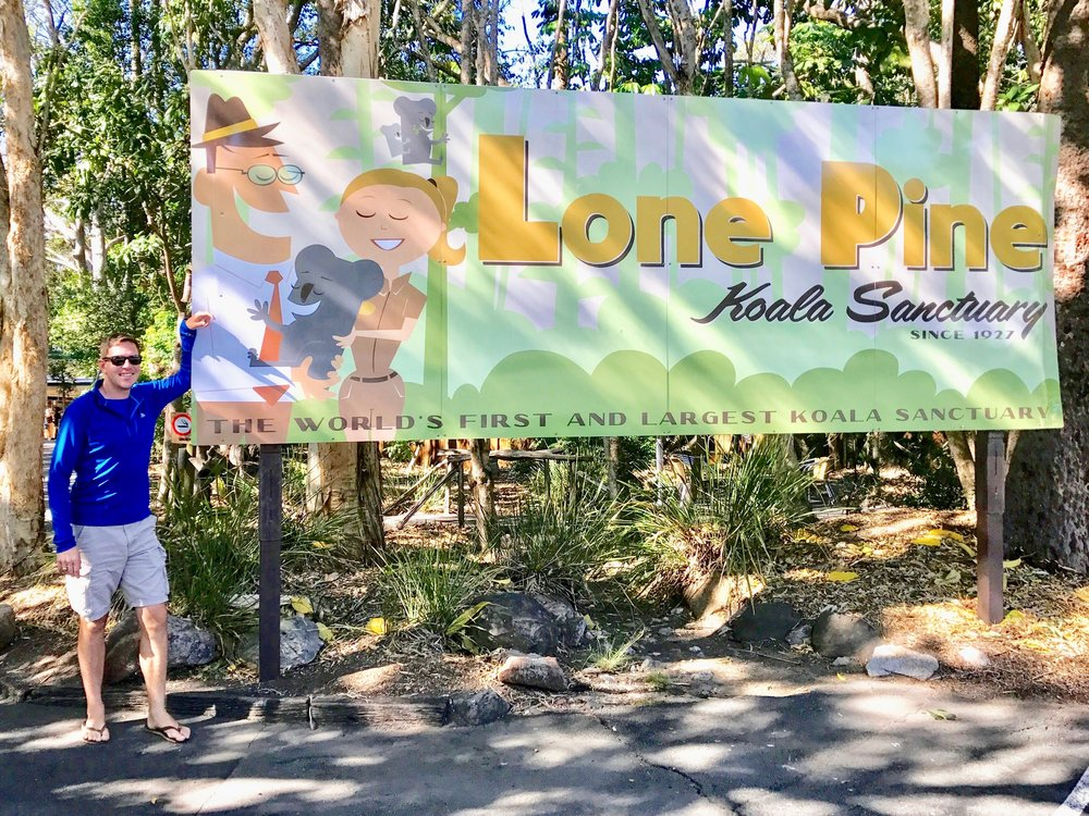 Lone Pine is the world's first and largest koala sanctuary.