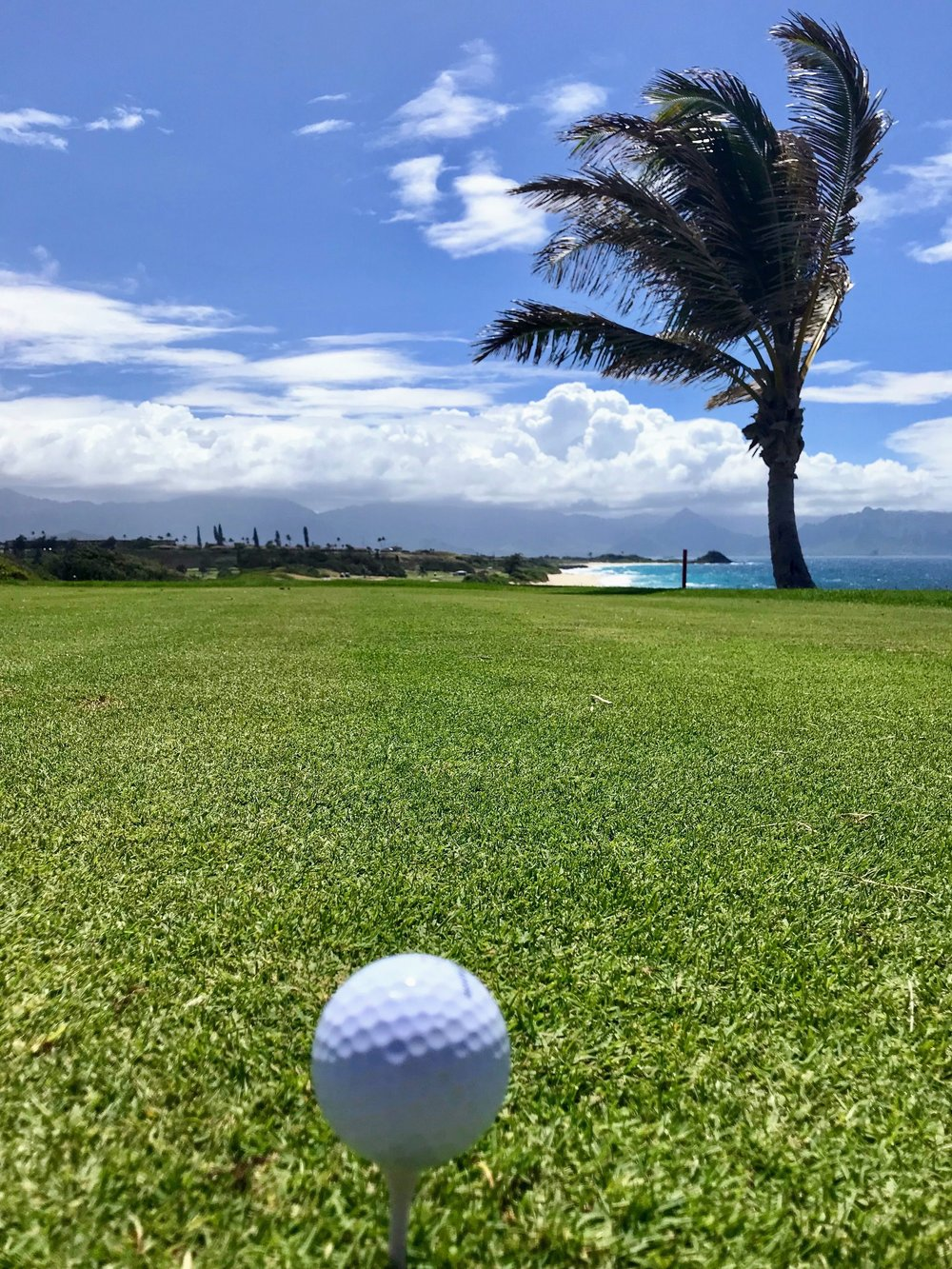 Golfing the North Shore of Oahu at one of the most beautiful courses I might ever play. Yes, I'd love to play Pebble. No, I don't want to drop $500.