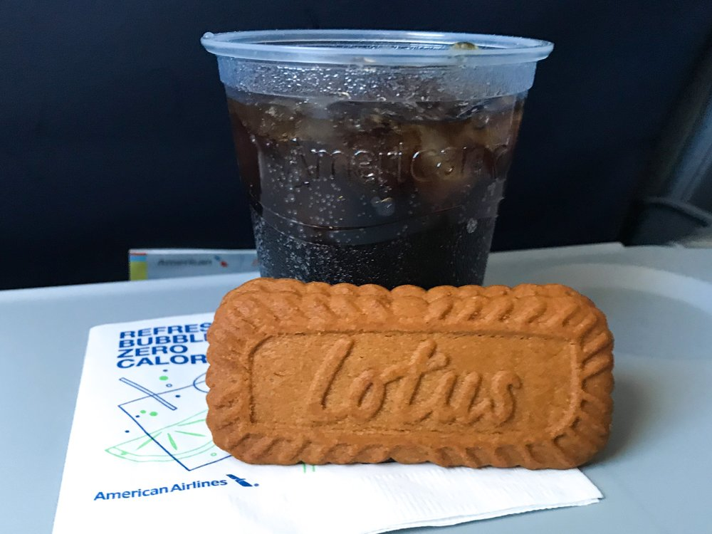 American serves complimentary Coca-Cola products and Biscoff cookies. Flights over 1,100 miles offer Zöes Kitchen sandwiches and wraps for purchase. The flight attendant offered me the full can of Coke.