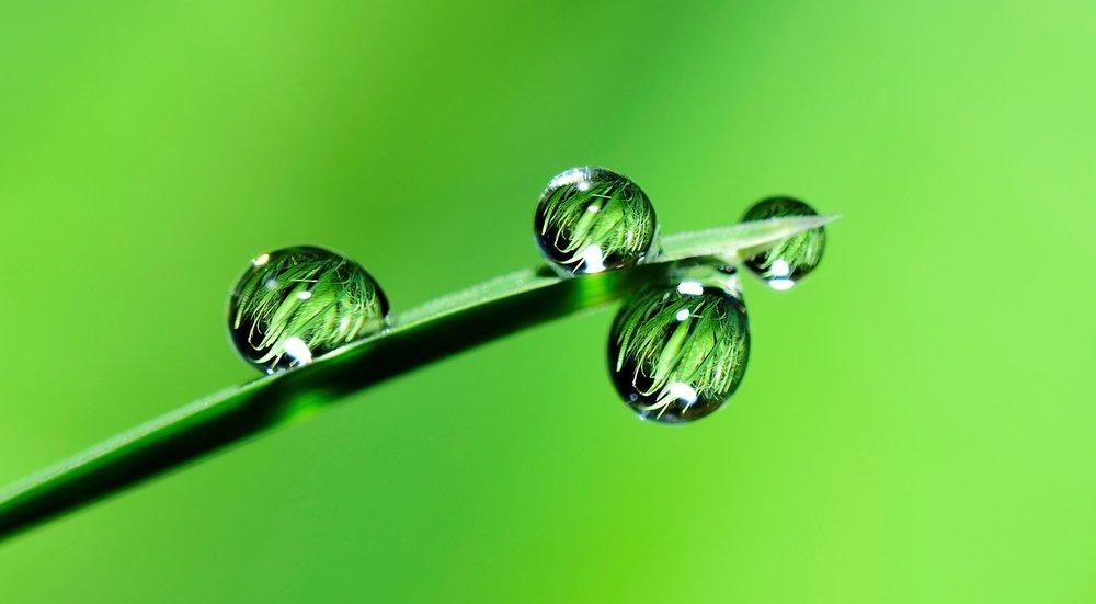 water-2986837_1280.jpg