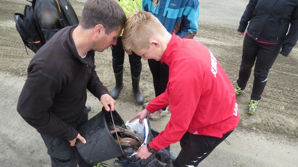 Fiskedag med skulen - 2015
