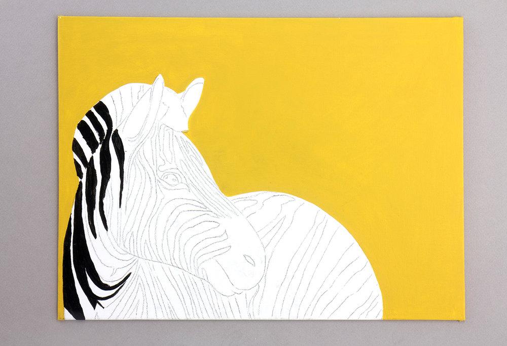 zebra-06.jpg