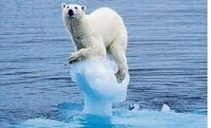 Who melted my home ?  Global Warming affects us all, including future generations. Be part of the solution support Global Cooling.