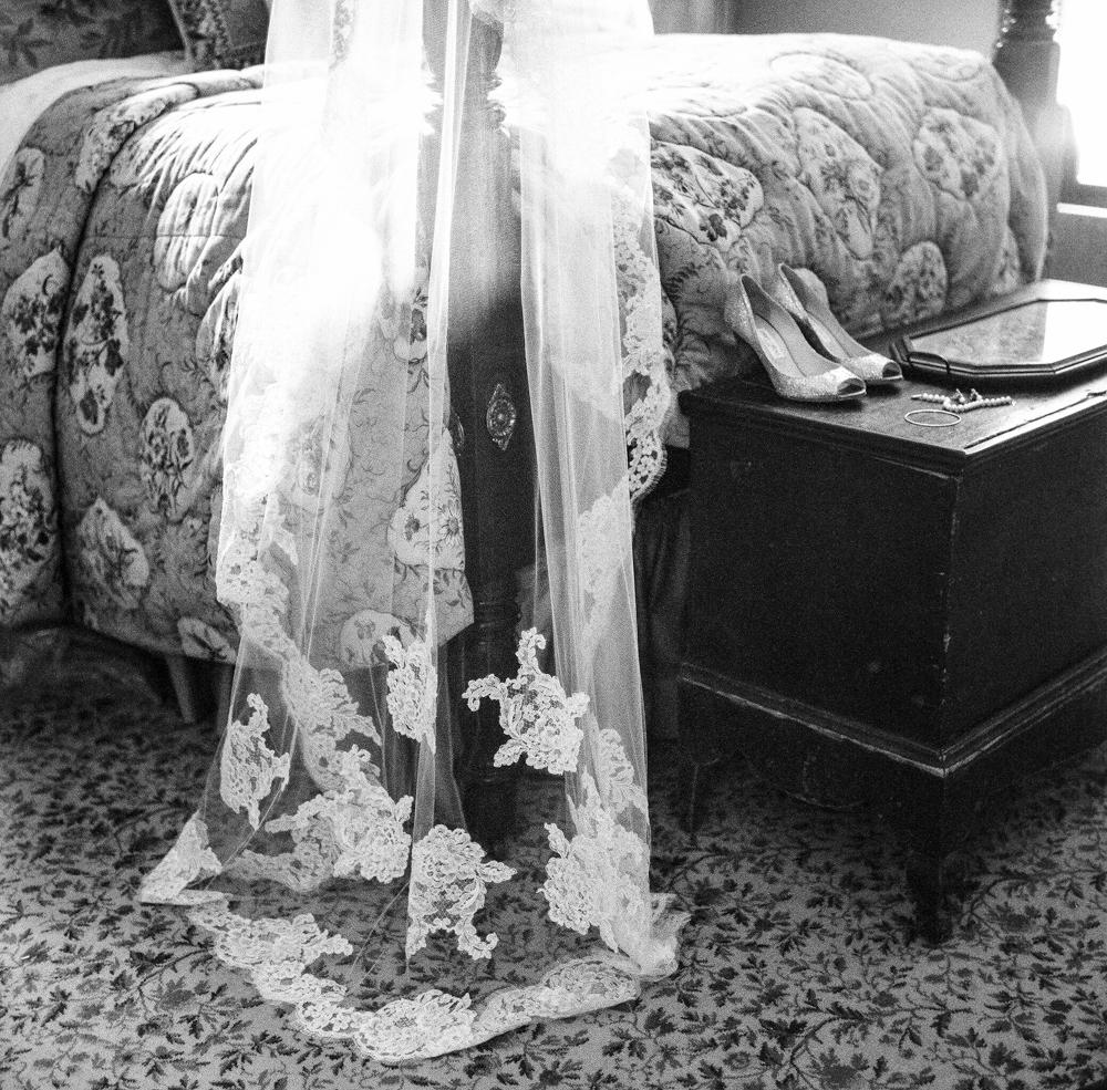 Radiant Southern Charm, Events by Reagan, Virginia Wedding, Destination Wedding Planner, Veil,