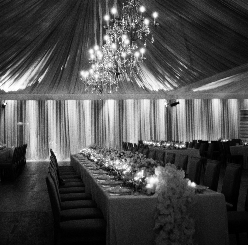 Radiant Southern Charm, Events by Reagan, Virginia Wedding, Destination Wedding Planner,  Dinner table