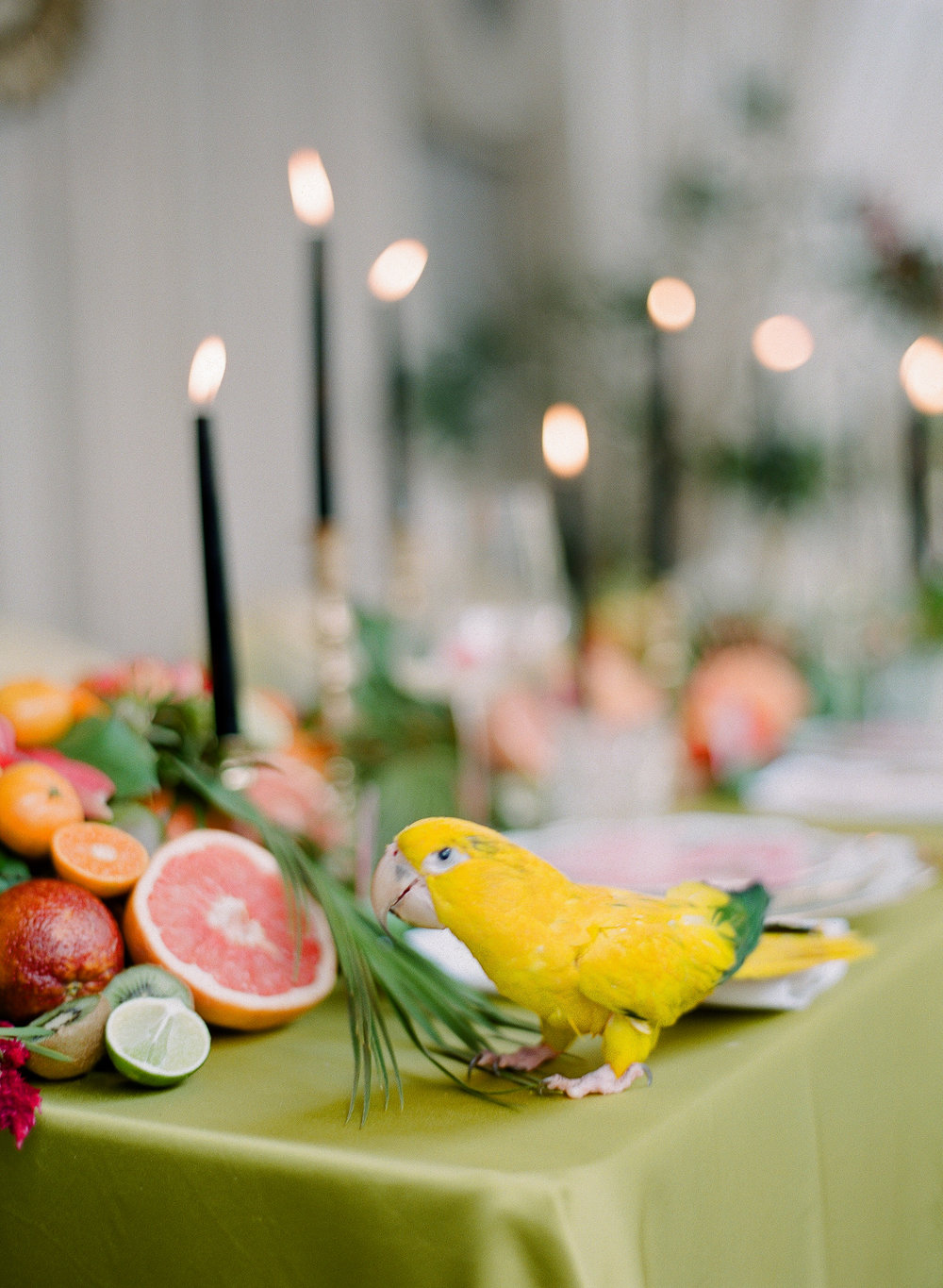 Charleston Porch Party, Events by Reagan, Dinner Party, Tropical Party, Charleston Event Planner , Table Decor