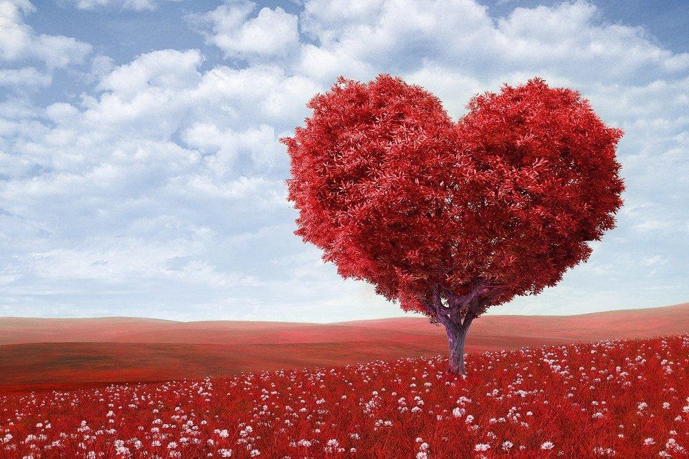 Eternal Love - © 2019Genre: Soft RockTheme: Love