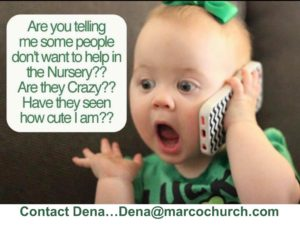Nursery-help-slide-300x227.jpg