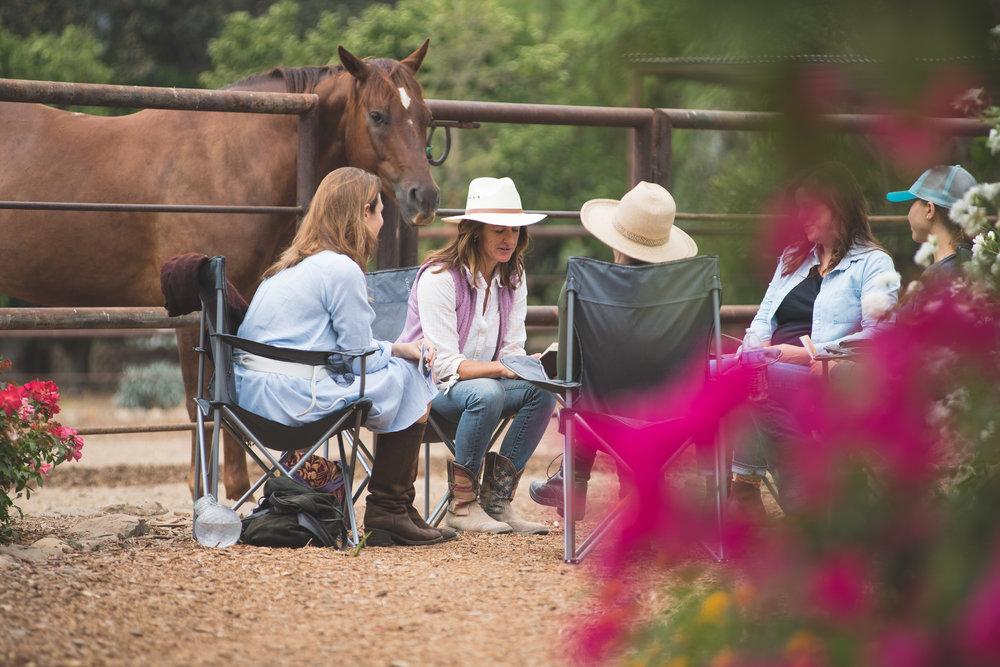 HorseMedicine-17.jpg