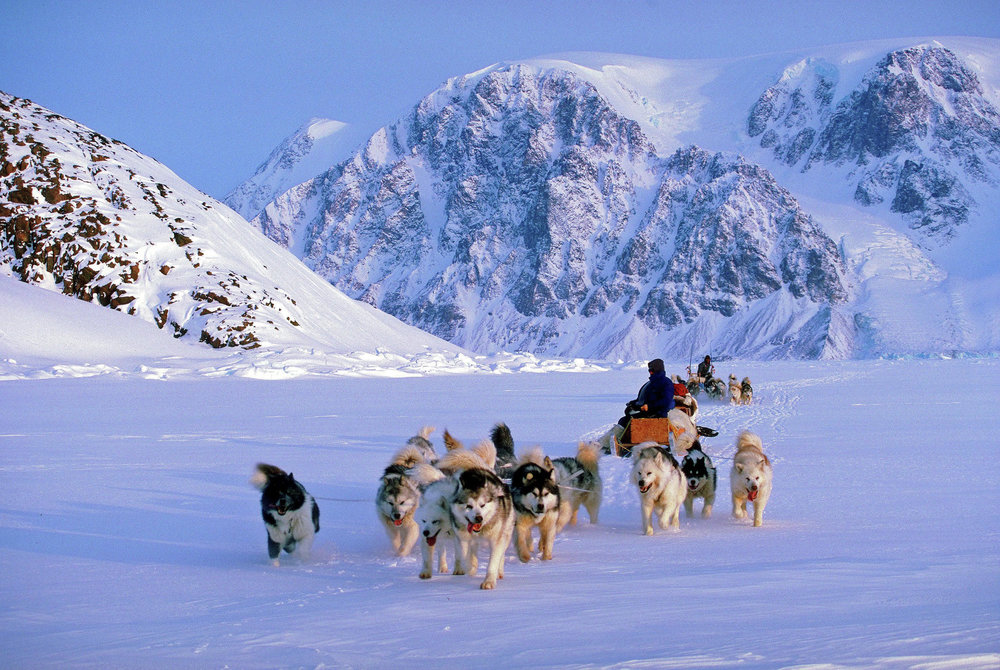 Ely's Paul Schurke routinely takes guests at his Wintergreen Dogsled Lodge on dogsled trips to some of the world's coldest regions. (Submitted photo)
