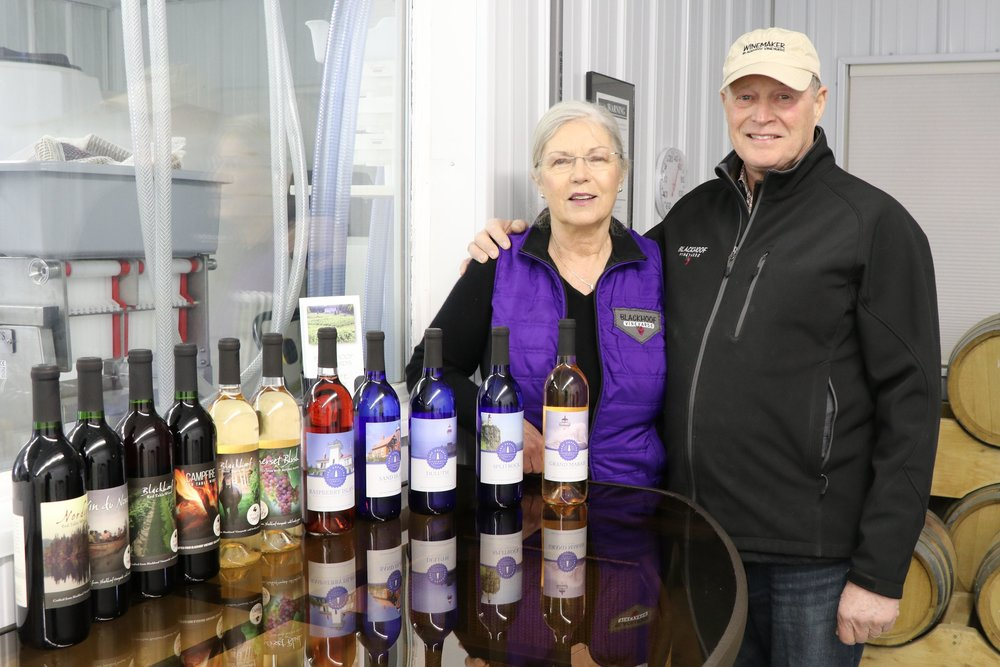 After retiring, Cheryl and Terry Heggemeier planted a vineyard in 2009 and began bottling and selling wine in 2015 as Blackhoof Estate Vineyard and Winery. Jamey Malcomb / Forum News Service