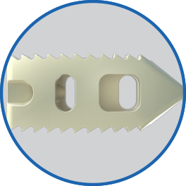 SF_Website_Squarespace_Assets_Features_LES P-LIFT_InterbodyWindows.png