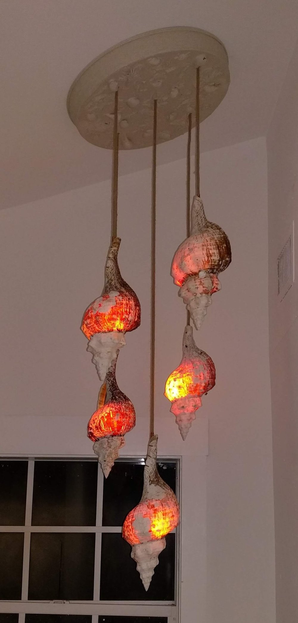 HORSING AROUND…CUSTOM CONCH SHELL CHANDELIER