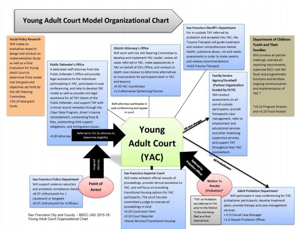 In 2015 City of San Francisco established the Young Adult Court (YAC) model, an alternative court program designed for youth ages 18-25. The model was designed to address the needs of San Francisco's vulnerable young adults by providing participants with access to wraparound services, job referrals, case management services and other supports. In the spring of 2015, DCYF contracted with Social Policy Research Associates to conduct a three-year evaluation of the YAC. This reports weaves together information from multiple data sources to provide a description of the planning, implementation and initial two years of YAC programming.