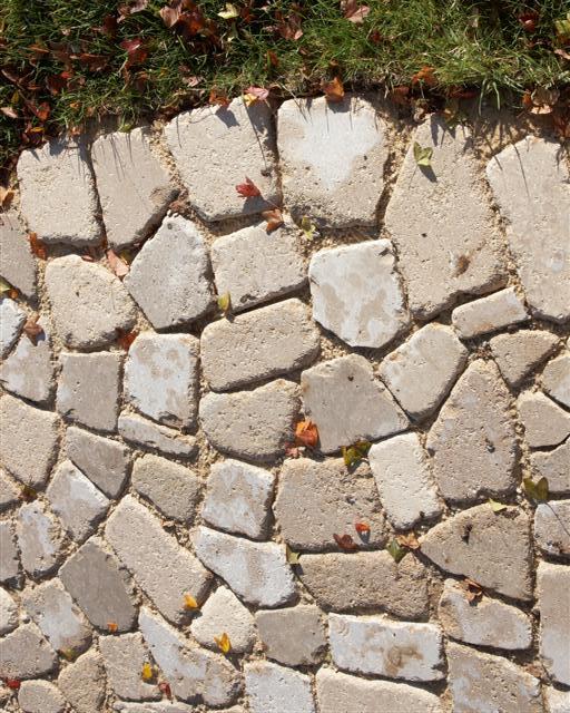 Pave Mosaique.jpg