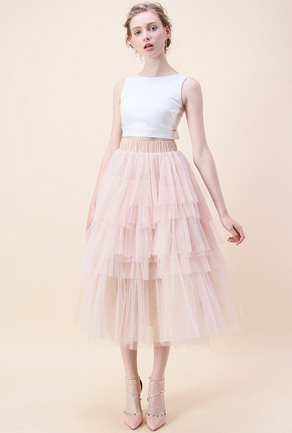 Chicwish Tulle Skirt