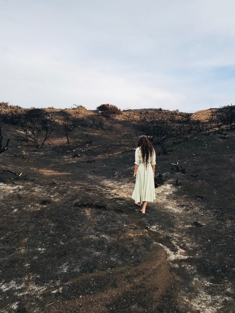 Malibu after the fires