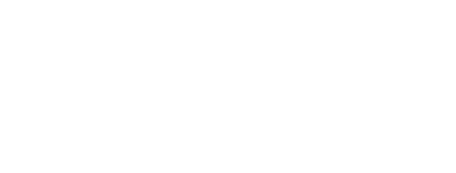 Alpine Tours and Transfers