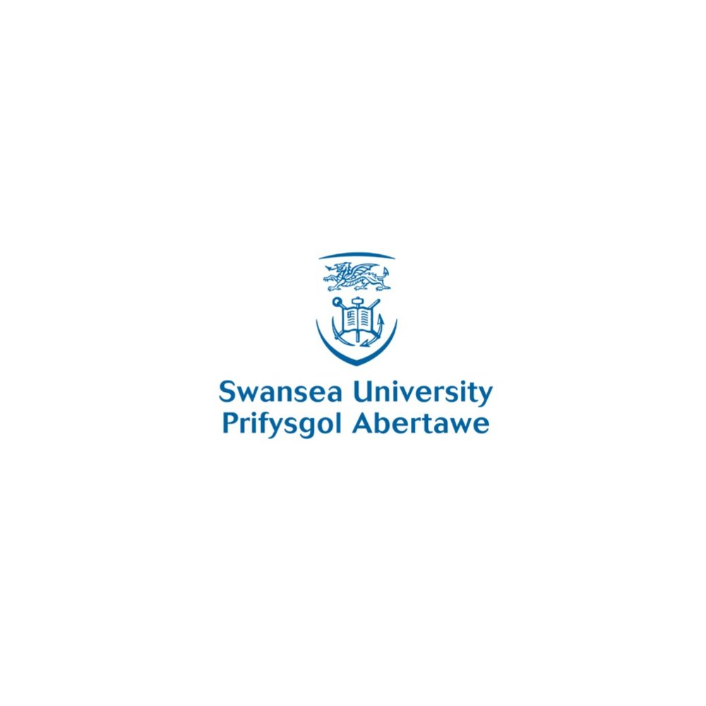 Swansea University.jpg