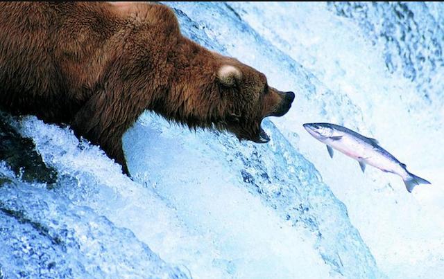 Alaska-640.png