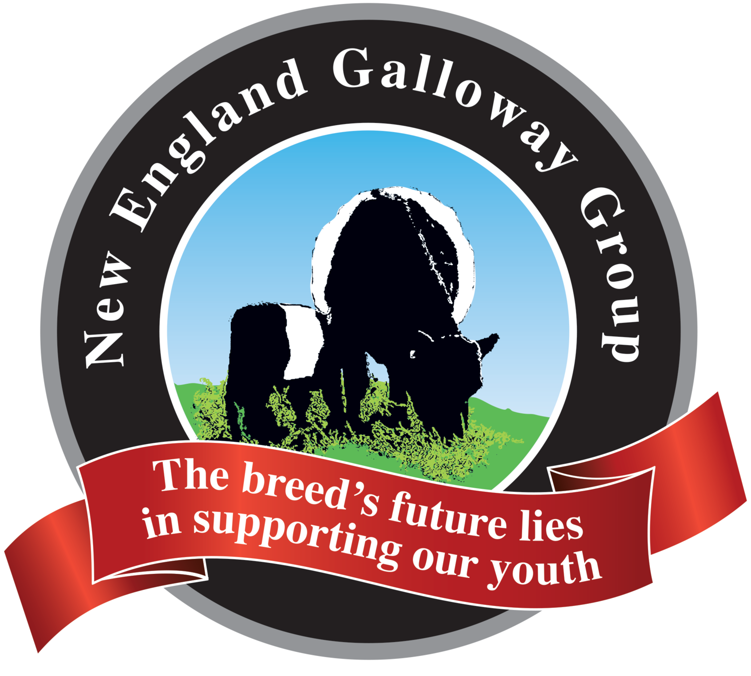 New England Galloway Group
