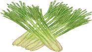 The-benefits-of-Lemongrass.jpg