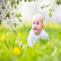 Babies-and-infants.jpg