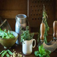 Fresh-Herbs.jpg