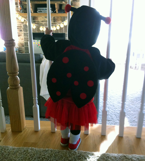 Happy Holdyween - ladybug costume @ohbotherblog