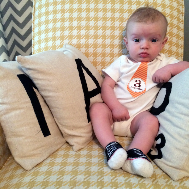 Gatsby is three months old @ohbotherblog