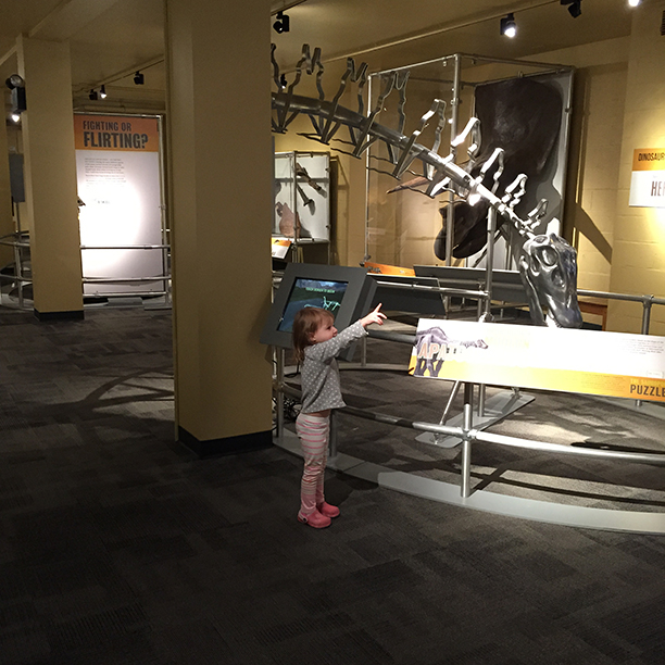A trip to the North Museum in Lancaster @ohbotherblog
