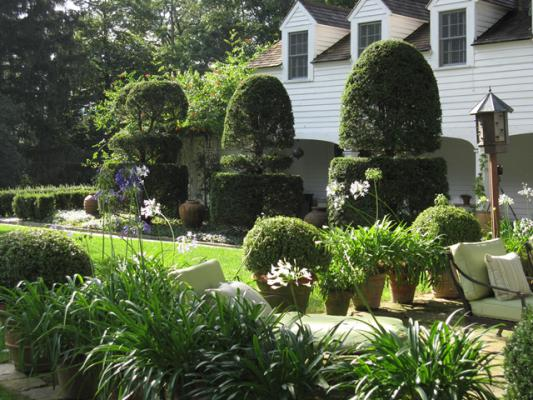 CT Falls Village 5.19 Bunny Williams Terrace with potted agapanthus and boxwoods 640_0.jpg
