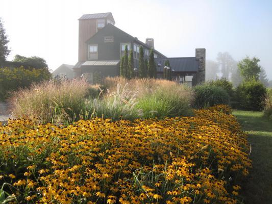 Hyland Wente Garden 1.jpg