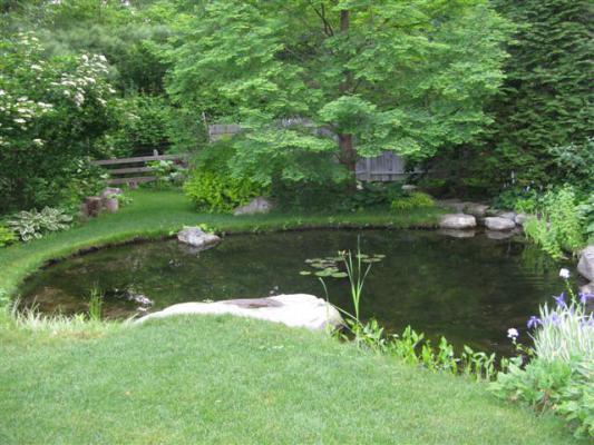 Miller_Garden_07.jpg