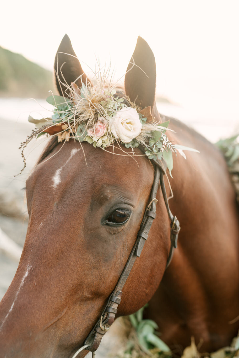 ©botetga53-Gypsy Bohemian Styled Shoot in New Zealand-30.jpg