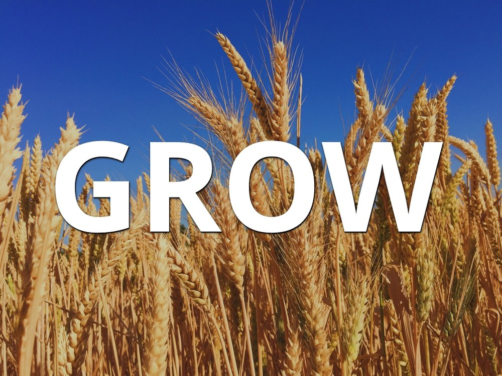 GROW-app.jpg