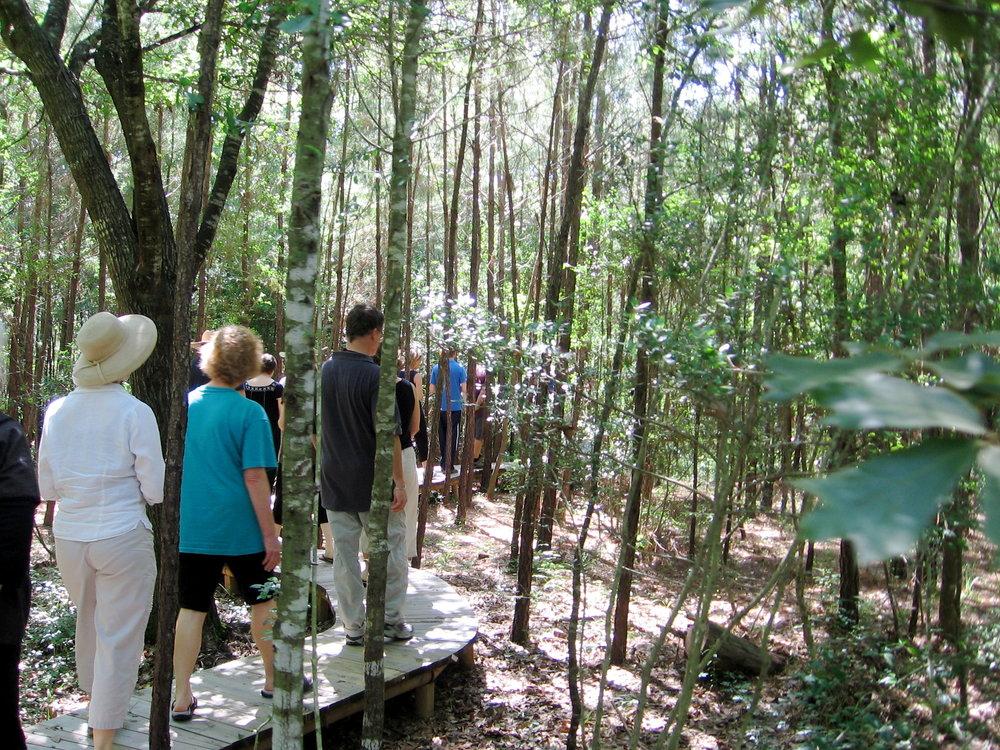 Walking Meditation: Intensive at Lotus Lake