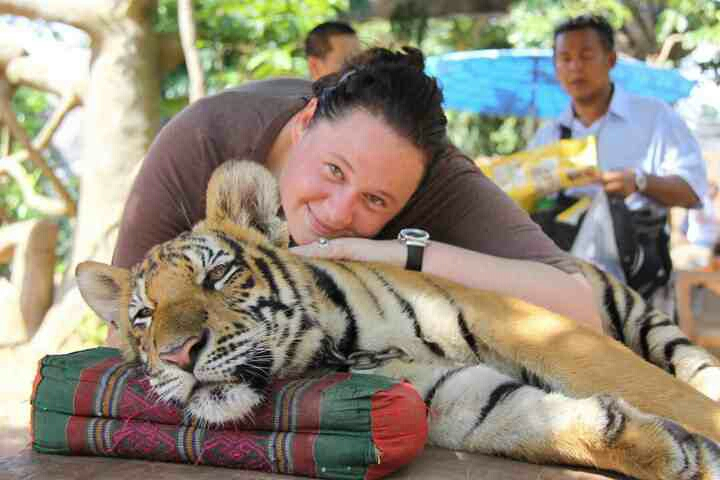 On a trip to Thailand, I visited the Tiger Sanctuary. This young cub was so tired from all the excitement that I just laid my head on him. It was amazing how calm and relaxed these cats were. This is my favorite picture from our visit.