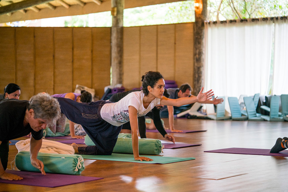 Yoga Lab - Daily yoga practices to release emotions that may be stuck in our body-mind. All those practices help restore our natural state and help the homeostatic process. These practices can support processes of conflict transformation.