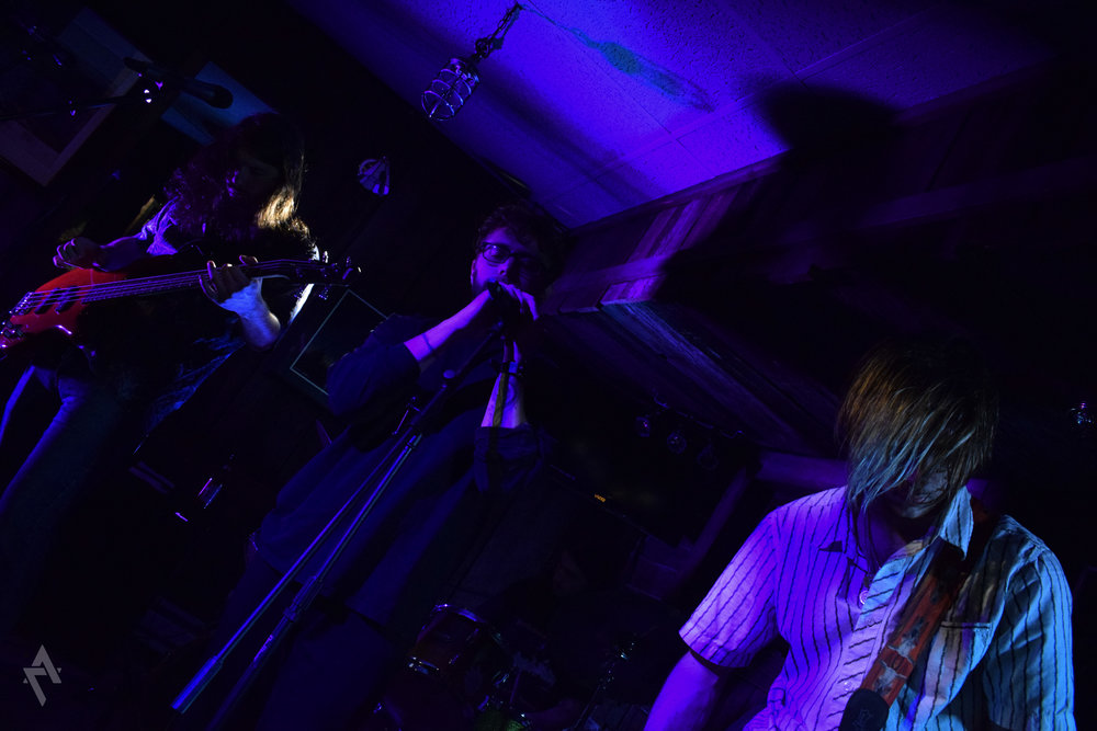 absent_minded_professors_mr_toads_concert_photography_greensburg_pa.jpg