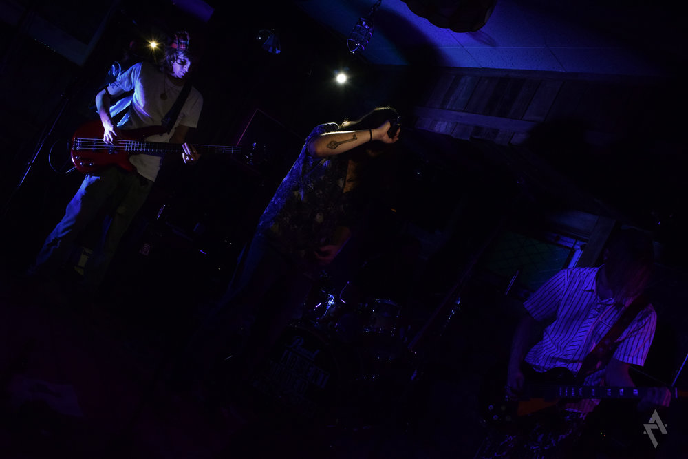 absent_minded_professors_mr_toads_concert_photography_greensburg_pa_4.jpg