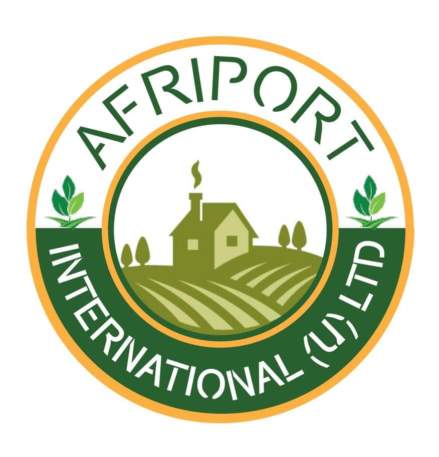 Logo_Afriport.jpg