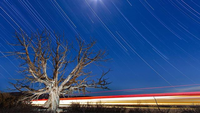 I made this photograph on my 3/15/19, my birthday. There was something startling about watching our planet spin past the stars for my 28th. This image is comprised of 7-8 ten minute exposures on the side of the road in Arches National Park. A very small LED constant light set at 1% illuminates this beautiful Juniper tree. I fell in love with the desert ecosystem on this trip, and dead Juniper trees with their twists and turns, reminded me of the beauty that can be found in death. This year I've attended two family funerals: my Grandmother's and Uncle's. I've been surprised and grateful to find so much joy and love to be shared with my family during these times. Our lives are twisting away one night at a time, so only now can we make things right, love to the best of our abilities, and pursue our passions.